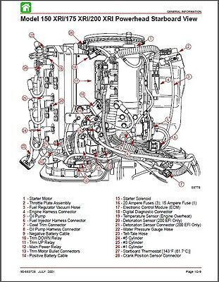 Mercruiser 5 0 Service Manual Pdf