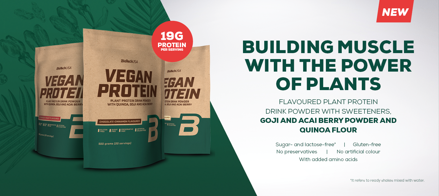 100/%Vegan Erbsen Reis Amino 29,98€//kg BioTech USA Vegan Protein 500g Bonus