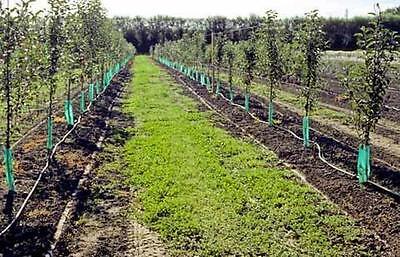"5//8/"" Poly Hose 500/' 16mm Tubing Irrigation Blank Line Garden Hose Water Tube"