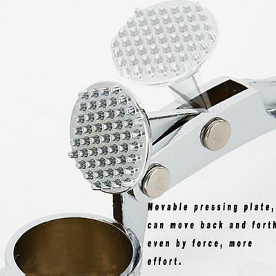 Professional Garlic Press Deluxe Heavy Duty Stainless Steel Crusher Slicer Tool