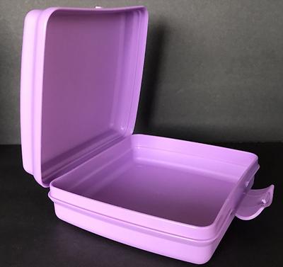 Tupperware Hello Kitty Sandwich Keeper Hinged Crayons Crafts Rainbow Purple New 2