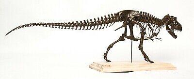 1/20 Tyrannosaurus Rex Trix Skeleton Model T-Rex Dinosaur Collector Toy 3D Print 5