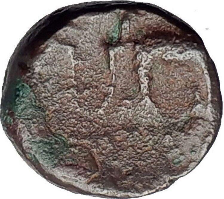 ANTIOCHOS III the GREAT - Rare R1 Ancient Greek SELEUKID Coin ELEPHANT i63174 2