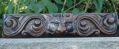 19C English Salvage Set 3 Carved Gothic Oak Griffin/Gargoyle Drawer-Front Panels 7