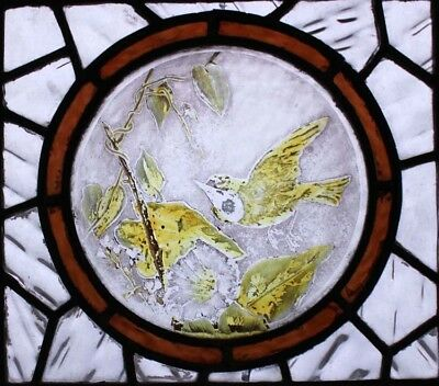Victorian English Painted Bird Antique Stained Glass Window 2
