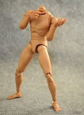 1/6 Narrow Shoulder Male Body Figure for hot toys TTM18 TTM19 TTM21 ❶US seller❶ 6