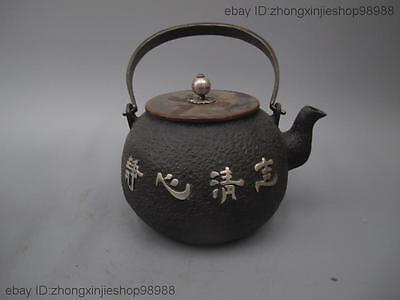 Archaic Japan Iron Silver Orchid Flower 静心清志 Flagon Kettle Wine Tea Pot