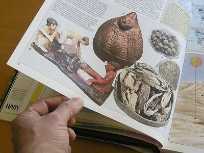Hammond Past Worlds The Times Atlas of Archaeology Hardcover Brown Cloth @ 1988 11