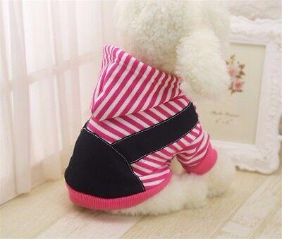 Abbigliamento Per Cane Carlino Yorkshire Maltese Bulldog Taglia