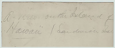 RARE Orig Albumen Photo - Island of Hawaii - Sandwich Islands c 1870s Settlement 3