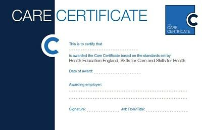 The Care Certificate Answers -15 Standards Help Guidance **Assessor Verified** 2