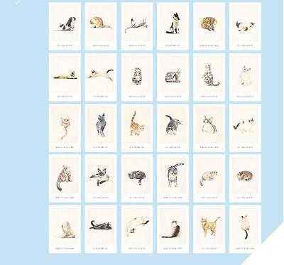 "/""Like a Cat/"" 30 Pcs Mixed Postcards Set Postcard Lot Box Cute Gift Bookmark"