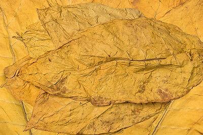 Virginia Klasse 2 1Kg Duft & Deko Rohtabak Naturtabak Blätter 2