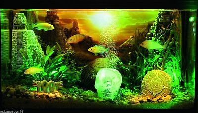 HYDOR H2SHOW UNDERWATER LED LIGHTING (with 2 year guarantee) 5
