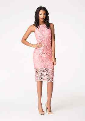 NWT bebe lace rose coral pink zipper back midi party club sexy top dress XS 0 3