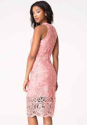 NWT bebe lace rose coral pink zipper back midi party club sexy top dress XS 0 4