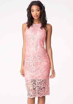 NWT bebe lace rose coral pink zipper back midi party club sexy top dress XS 0 2