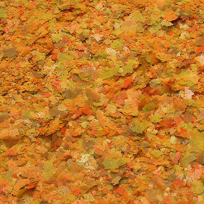 JBL NovoColor  Farbfutter für Aquarienfische in den Abpackungen 100 und 250 ml 2