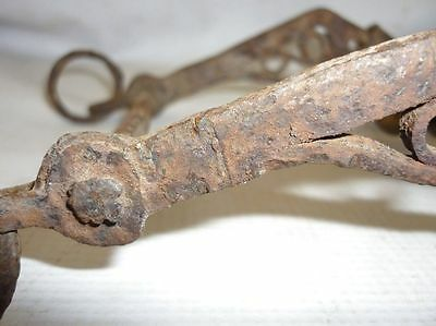 Antique Iron Horse Bit Harness Bridle Handforged 1700's 8