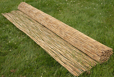 Natural Peeled Reed Screening Roll Garden Screen Fence Fencing Panel Wooden 4m 4