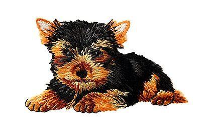 Aufbügler♥Bügelmotiv♥Applikation Patch♥ Hund Huskie ♥Aufnäher ♥NEU♥♥