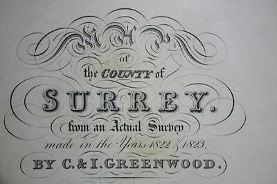 Antique Map of the County of Surrey 1822 & 1823, GREENWOOD & Co. 1829  [PL887] 3