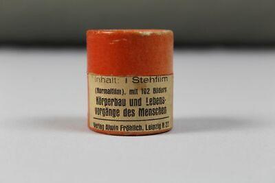 """Stehfilm """" Körperbau + Lebensvorg. v. Mensch  """" Pappschachtel 102 Bilder  /260 2"""