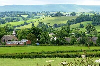 Beautiful holiday Cottage nr Hay On Wye Sleeps 4+2 24-27 July £350 dog friendly 11