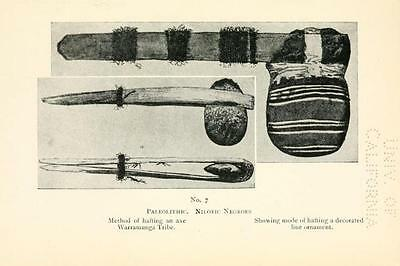 178 Rare Pre-Historic Man Books On Dvd- Primitive Human Fossils Stonehenge Flint 11