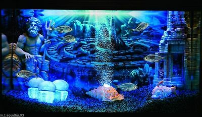 HYDOR H2SHOW UNDERWATER LED LIGHTING (with 2 year guarantee) 4