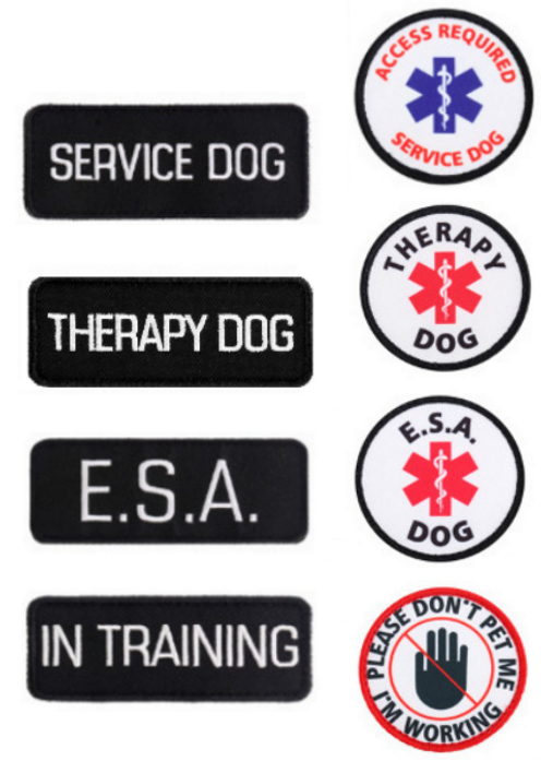 ALL ACCESS CANINE™ Service Dog - ESA Dog - Therapy Dog Vest Waterproof Harness 3
