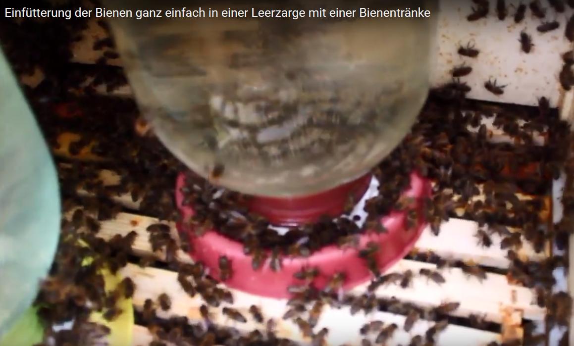 Berühmt Einen Verdrahteten Kiefer Füttern Fotos - Schaltplan Serie ...