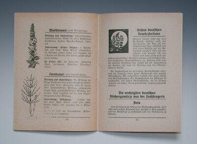 2 x Hefte Deutsche Heilkräuter um 1935