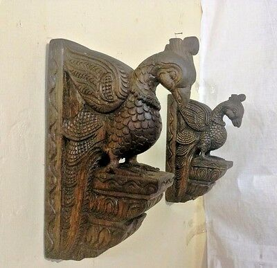 Vintage Bird Peacock Wooden Corbel Bracket Pair Wall Hanging Parrot Sculpture 4