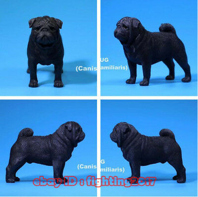 1//6 Scale MR.Z MRZ018 lovely Pug Dog Pet Animal Figure For Collection Model Toy