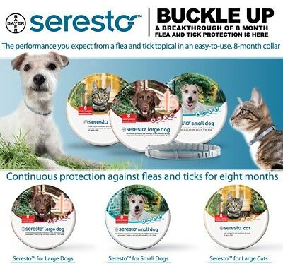 Bayer Seresto Flea & Tick collar for Cats  8 Months Protection EPA USA 3