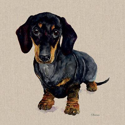Jane Bannon Art Unframed Prints Large Range Animal Pictures 75 Different Options