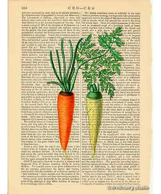 Carrots Art Print on Antique Book Page Vintage Illustration Vegetables Veggie