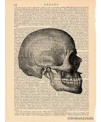 Skull #2 Art Print on Antique Book Page Vintage Illustration Medical Anatomy