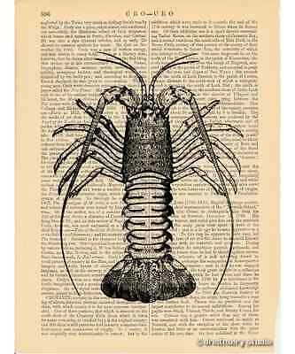 Crawfish Art Print on Antique Book Page Vintage Illustration Crayfish