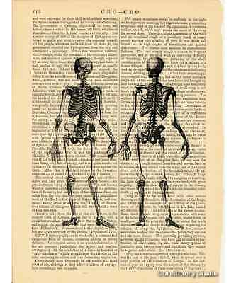 Full Body Skeleton Art Print on Antique Book Page Vintage Illustration Medical