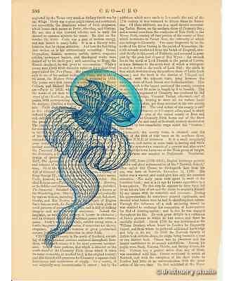 Jellyfish Art Print on Antique Book Page Vintage Illustration Leptomedusae 3