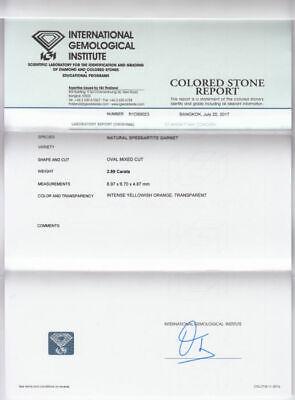 Loose Gemstone - Spessartite Garnet 2.89ct 10