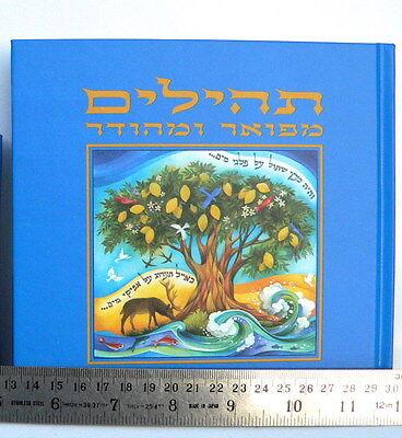 COLORFUL JEWISH HEBREW PSALMS Book,Tehilim Tehillim Bible Songs Hymns  Judaica