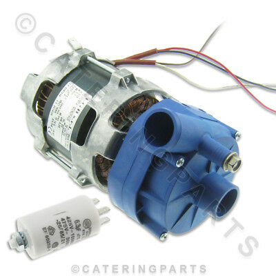 Lgb Zf131-Dx Wash Rinse Booster Pump Various Dish-Washer Glass-Washer Zf131Dx 3