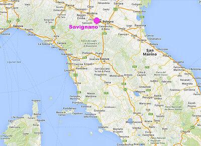 Venus from Savignano (Italy) - cast of resin 9