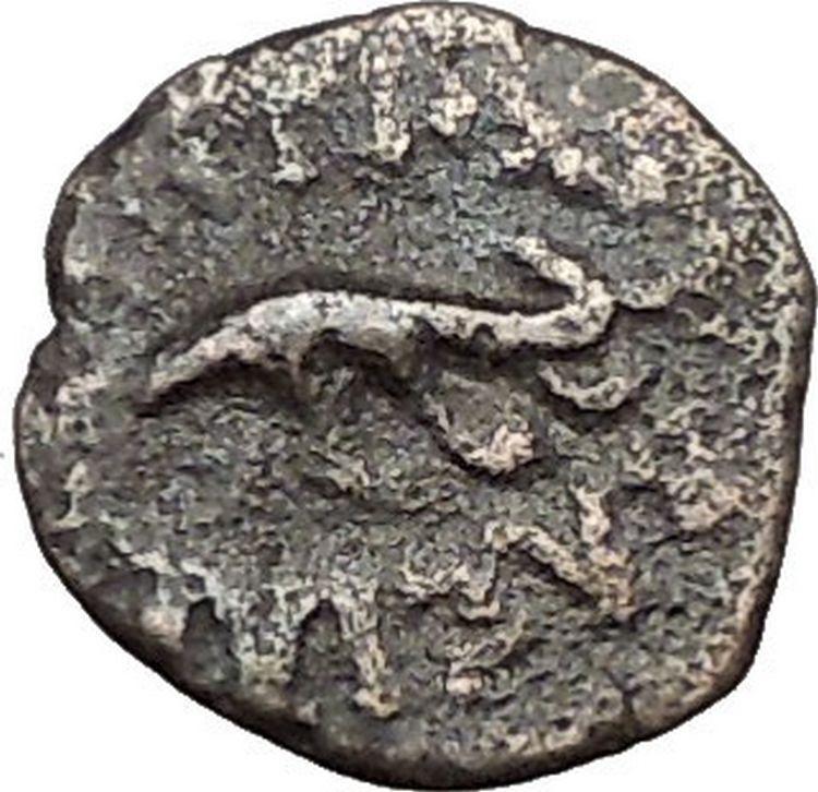 ANTIOCHOS VII Sidetes 138BC Ascalon Ancient ISRAEL Seleukid Greek Coin i56218 2