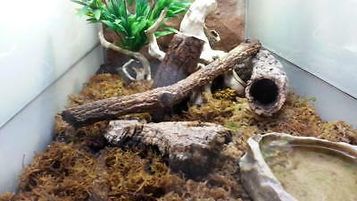 Kork Röhre: Natur Kork, Kork Rinde, Nager | gereinigt | 60 cm lang, ⌀= 15-20 cm 12