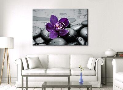 ... Stunning Large Canvas Wall Art Grey Purple Flower Calming Zen Picture  New Print