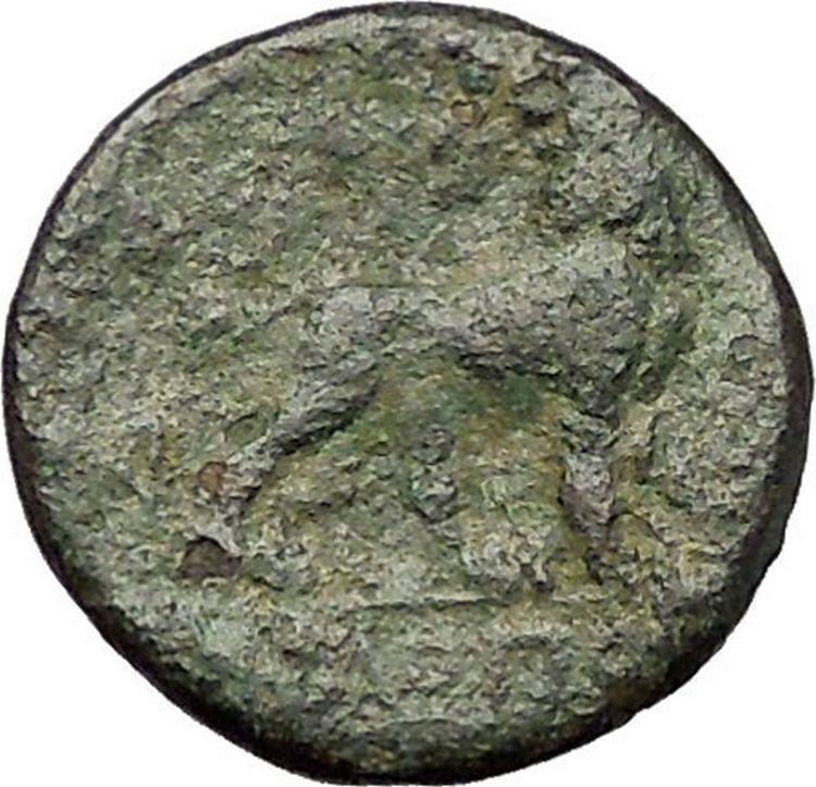 MILETOS in IONIA 260BC Apollo Lion Star RARE Authentic Ancient Greek Coin i57658 2